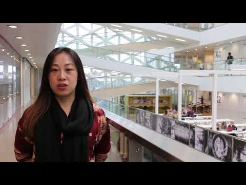 Chinese student Sara about the exchange programme Doing business in the world