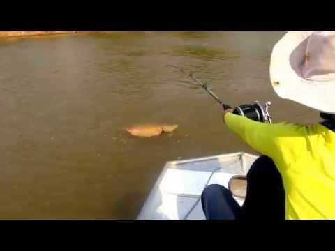 Pescaria Rio Araguaia - Luiz Alves - GO - arraia gigante - força de pirarara - outubro
