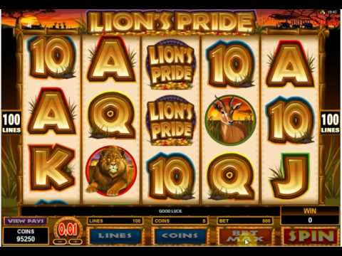Spin Palace Review - Online Casino Canada