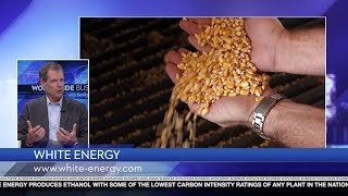 White Energy featured on Worldwide Business with kathy ireland®