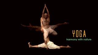 Yoga: Harmony with Nature - Hindi