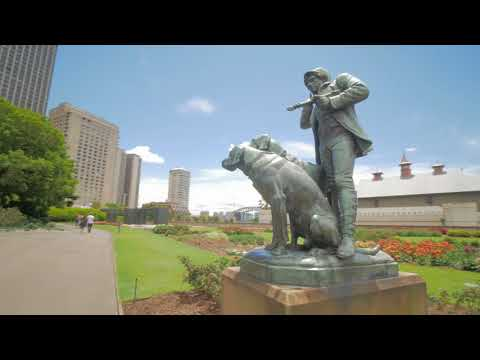 Sydney Video Walk 4K - Royal Botanic Garden Spring 2017