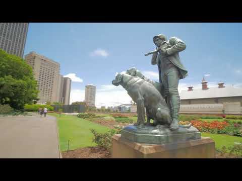 Sydney Video Walk 4K - Royal Botanic Garden Spring 2017