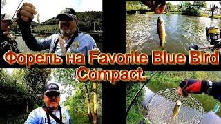 Спиннинг Favorite Blue Bird Compact. Рыбалка на дикую форель на гор...