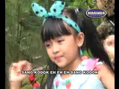 Video klip lagu anak : Sang Kodok