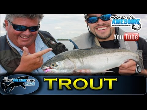 Fly Fishing for Trout on the Rutland Boils - TAFishing Show