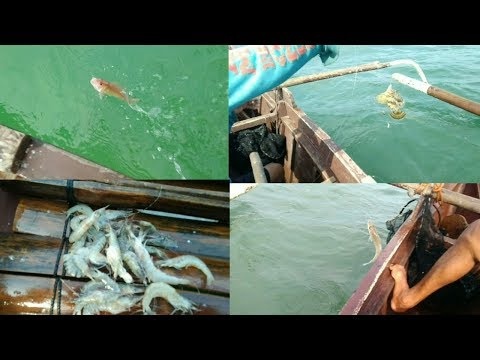 Traditional fishing,Ibat Ibang huling isda,catch and cook.. Philippines.