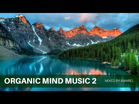 Organic Mind Music 2 by Amarel (Ambient)