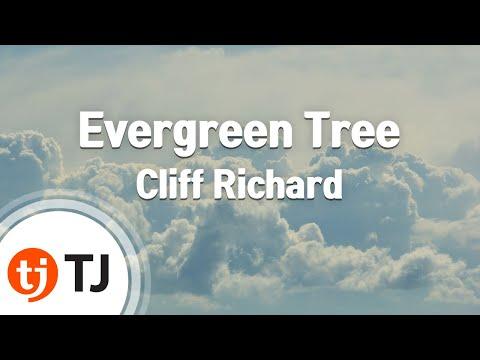 [TJ노래방] Evergreen Tree - Cliff Richard / TJ Karaoke