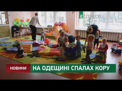 Espreso.TV: На Одещині спалах кору