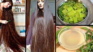 Trage dieses Öl einfach auf deine Kopfhaut auf und lasse extrem langes Haar wachsen