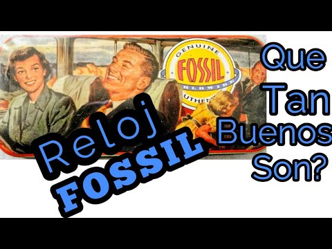 Reloj Fossil Que Tan Buenos Son?