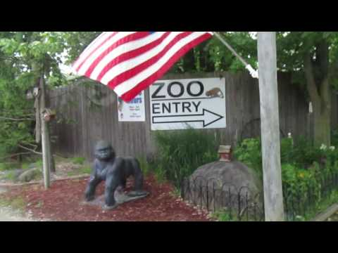 Special Memories Zoo Intro Greenville, WI 6-18-17