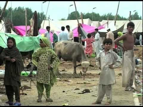 UN agencies call for $460 million to assist Pakistani flood victims