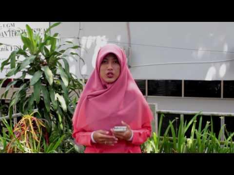 Geothermal Energy Development in Indonesia
