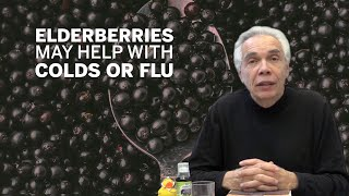 Dr. Joe Schwarcz: Elderberry extract may help with colds or flu