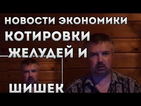 БУГАГА №3 Новости экономики Беларусь. Котировки желудей и шишек