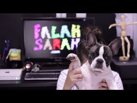 FALAH SARAH - FEICEBROOKS