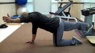 Bird Dog Exercises