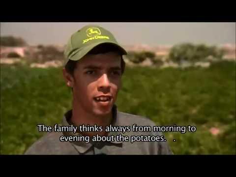 My Life Is Potato - Idaho haha Funny