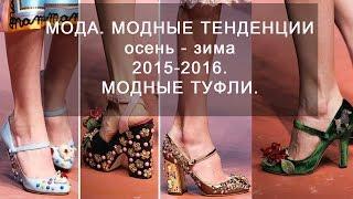 Мода.  Модные тенденции осень - зима 2015 - 2016.  Модные туфли.