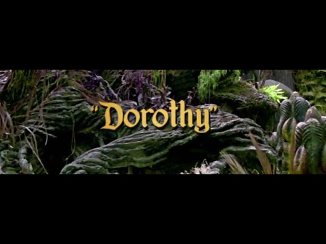 Dorothy (Official Video)