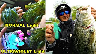 "Do ""UV"" Fishing Lures ACTUALLY WORK??? (SURPRISING RESULTS!!)"