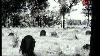 Документальное расследование: «Холокост»