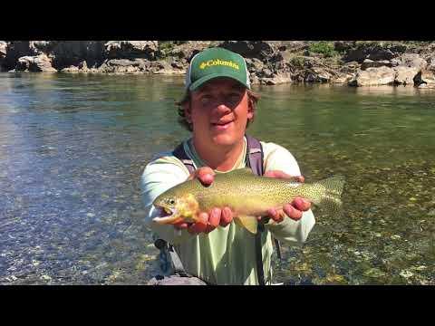 Fly Fishing Oldman River 2017