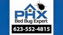 Fountain Hills AZ Bed Bug Exterminator - 623-552-4815 | Bed Bug Treatment