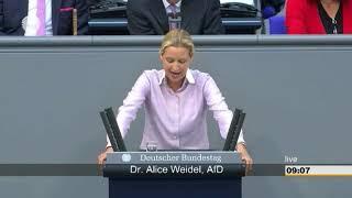 Alice Weidel zerstört Erika Steinbach im Bundestag!