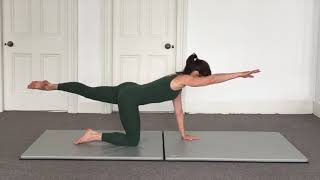 Pilates Mat - All Fours - Part 2 - All Levels