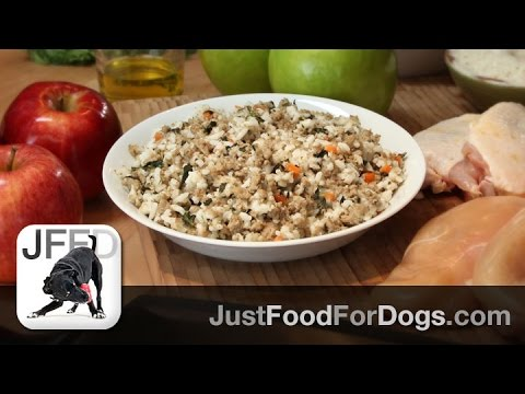 daily-recipes-for-dogs-chicken-amp-rice-justfoodfordogs