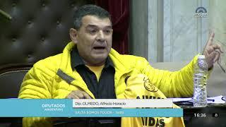 Diputado Olmedo Alfredo Horacio - Sesión 13-06-2018 - PL