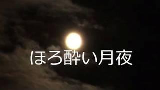 瀬戸香月 - ほろ酔い月夜