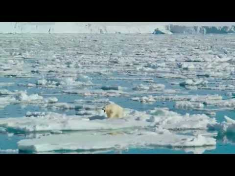 To The Arctic 2012 IMAX 3/3 (Exclusive)