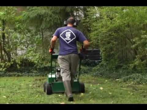 Lawn Repair Cleveland Oh Good Nature Organic Lawncare
