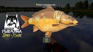 Русская рыбалка 4 КАРП РАБОЧАЯ ТОЧКА И на ЧТО ЛОВИТЬ