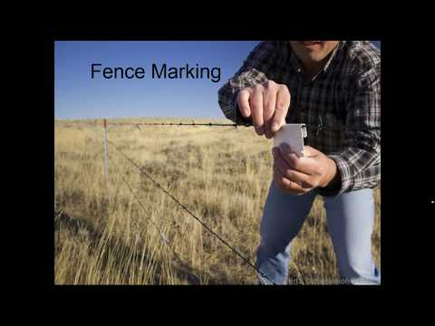 Greater Sage Grouse Conservation on  Montana s Working Lands