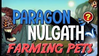 NEW UNDEAD LEGION & NULGATH NATION一 FARMING PETS! (AC EVENT RARE) AQW AdventureQuest Worlds