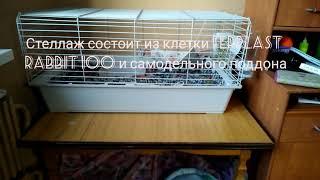 Клетка-стеллаж для морских свинок #1 СТЕЛЛАЖ ЗА 500 РУБЛЕЙ!!!