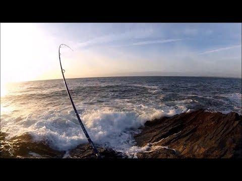 Shore Fishing - SPINNING For Sea BASS From The ROCKS - Dexter Wedge