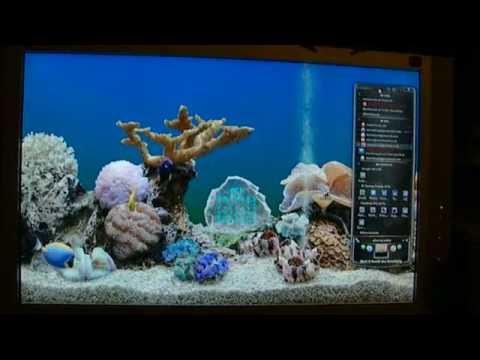 my aquarium desktop youtube