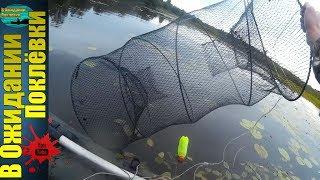 Рыбалка на морду .Ловим щуку и  не только !