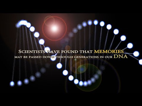 Memories can pass between generations through DNA