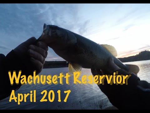 Wachusett Reservoir Bank Fishing - April 2017