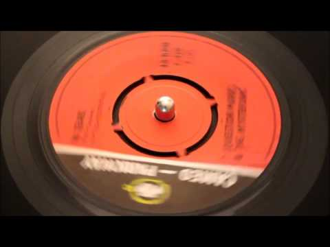 Question Mark And The Mysterians - 96 Tears - Cameo Parkway: C.428
