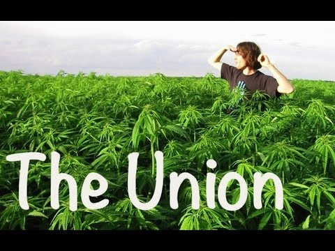 The Union: The Legalization of Marijuana