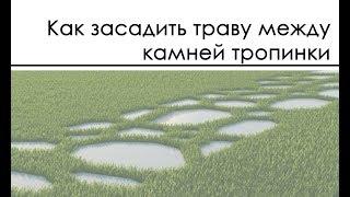 Как засадить траву между камней тропинки мультискаттером / Multiscatter