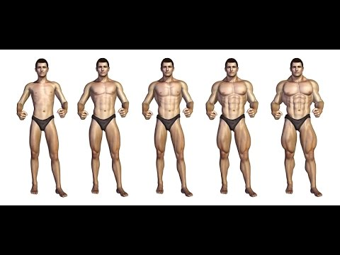 Cómo Crecen Los Músculos Youtube